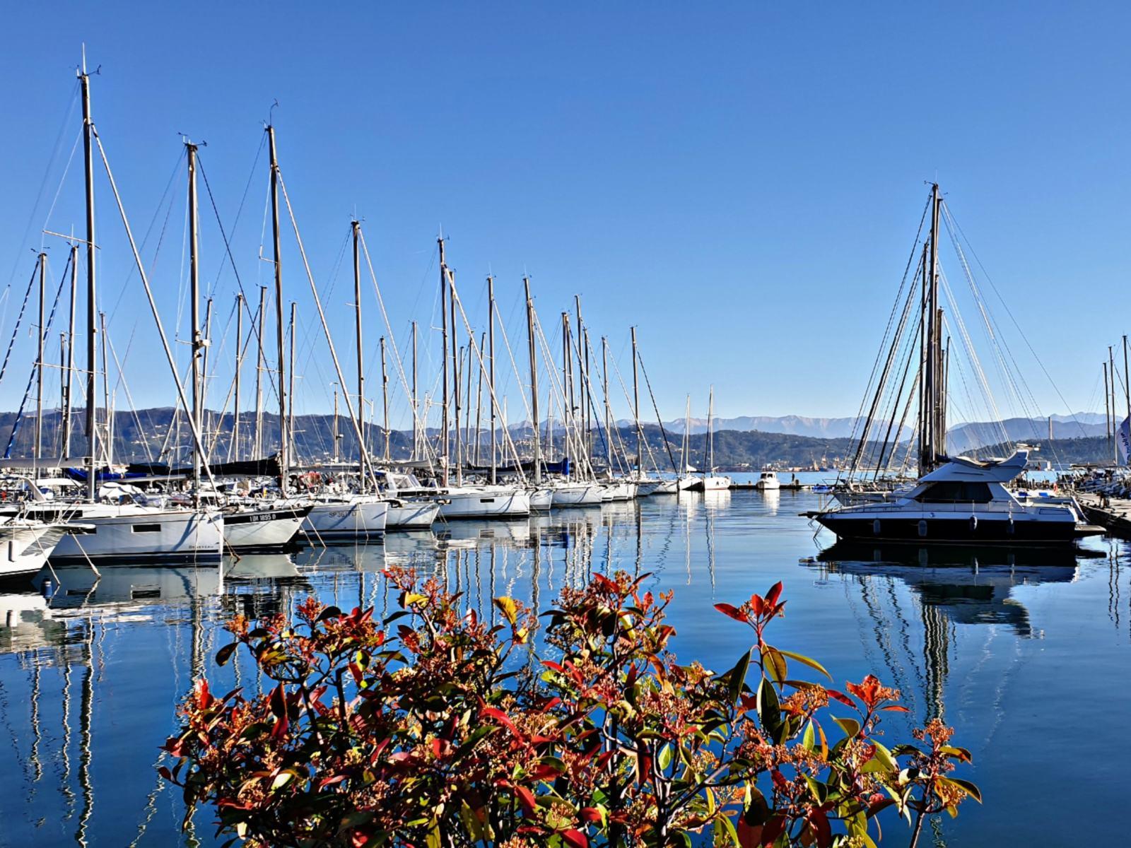 Marina del Fezzano