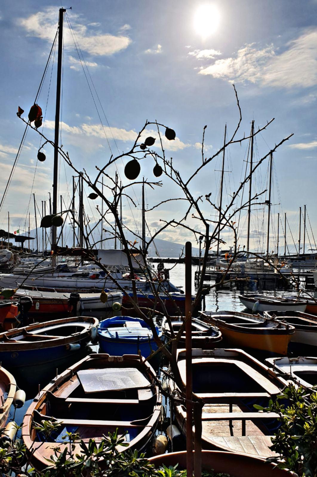Le barche di Borgo Marinari