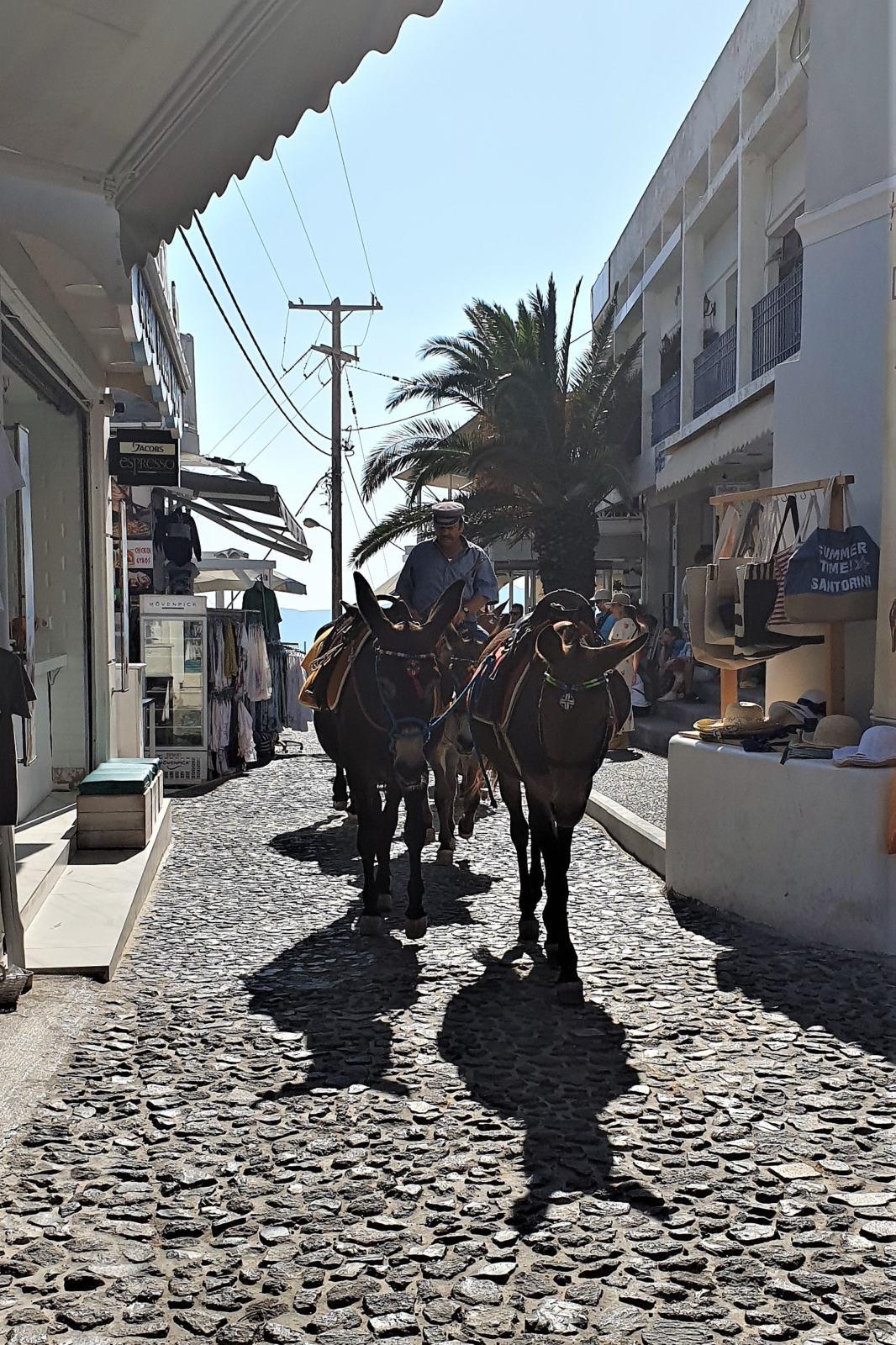 Asinelli di Santorini