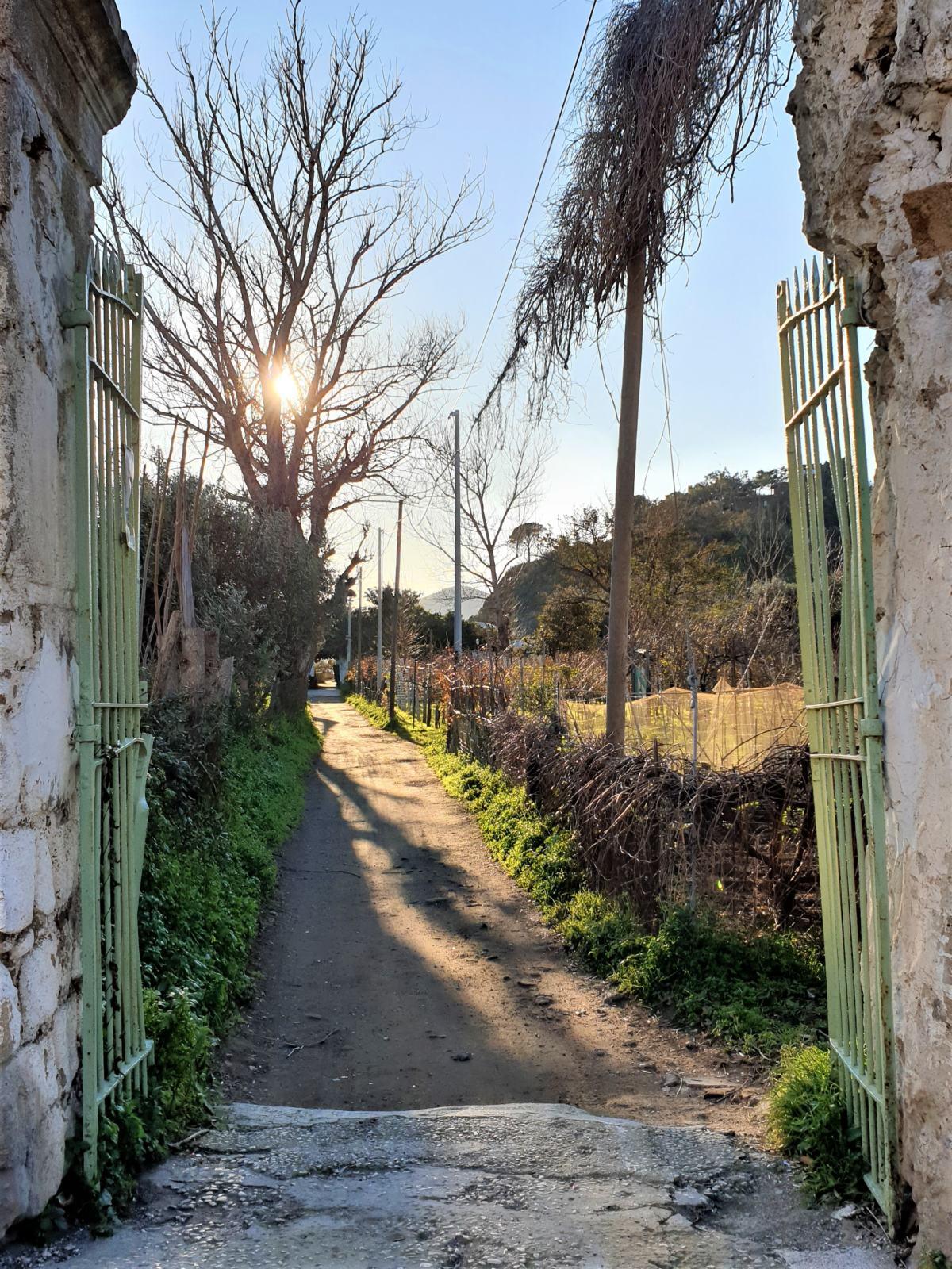 Ingressi a case private lungo via Solchiaro