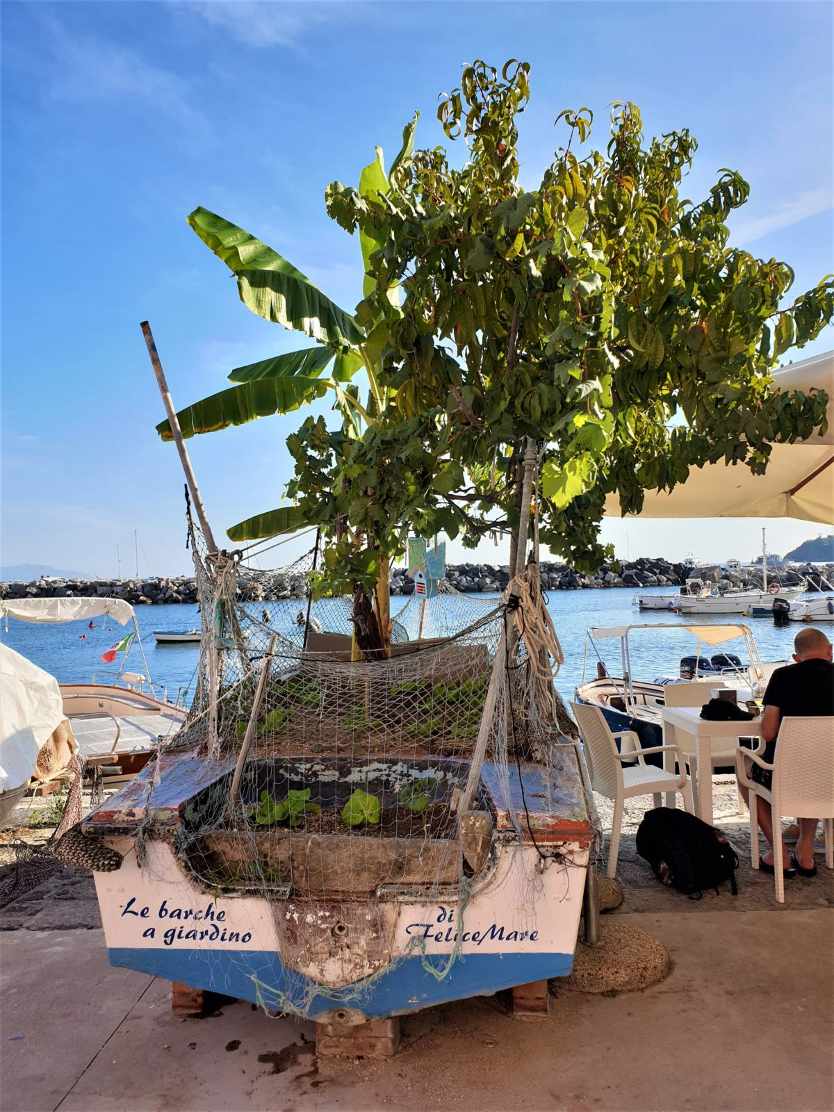La barca giardino di Felice Mare