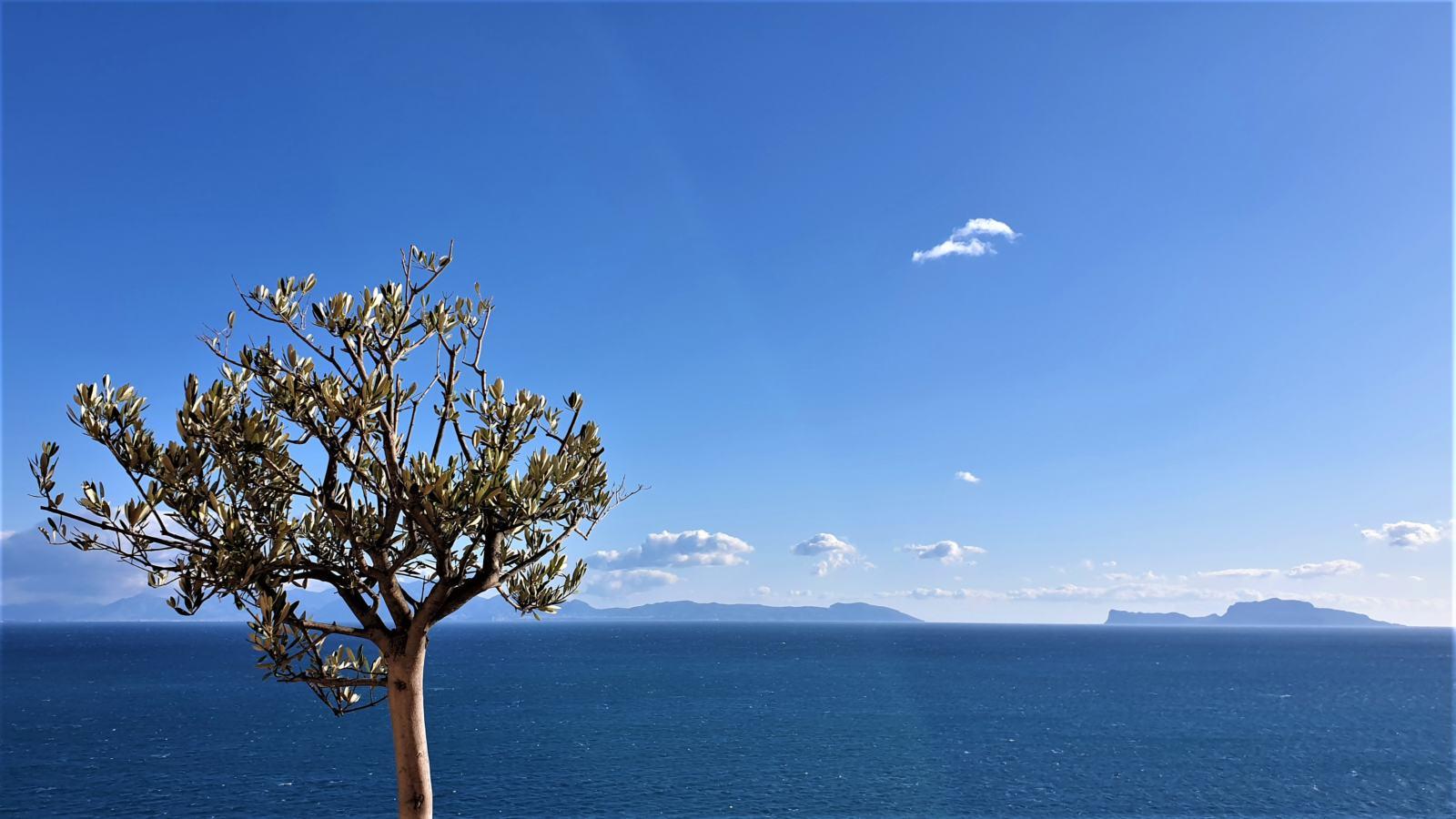Vista sul Golfo di Napoli dal terrazzo dell'Abbazia